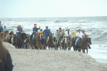 Salt Water Cowboys on Penning Day on<br>Chincoteague Island, VA